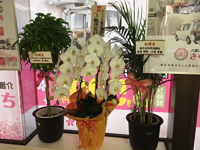 介護レンタカーさくら大宮店